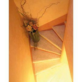 Stuc chaux décoration intérieur naturelle