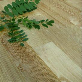 Acacia robinier à clouer