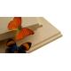 AGEPAN DWDRL parepluie écologique fibre bois Rainure languette