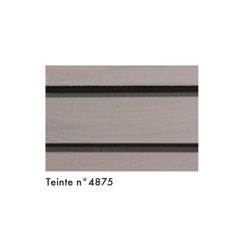Saturateur minéral KEIM Lignosil Verano 4875 Classique