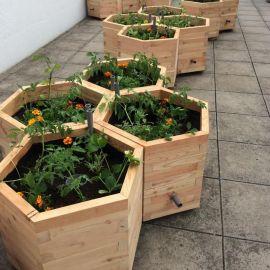 Jardinière pour embellir votre terrasse