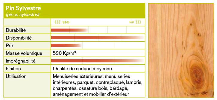 Caractéristiques essence pin sylvestre et maritime